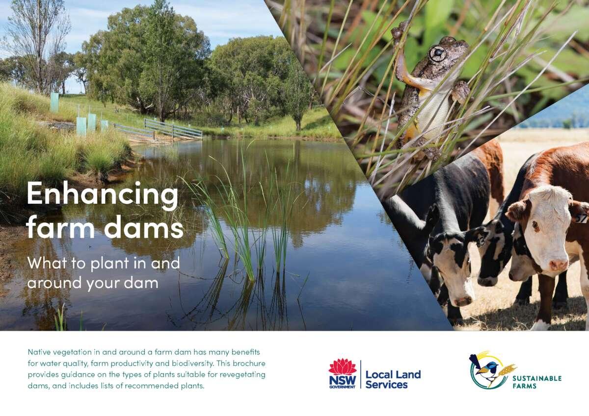 Cover of farm dam planting guide