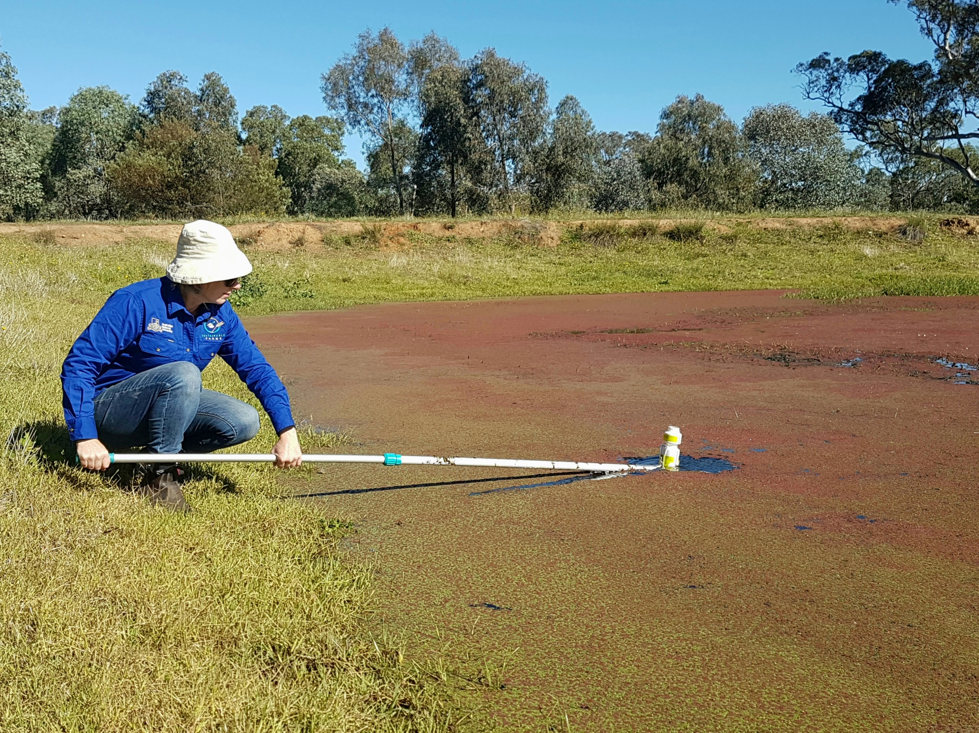 Photo of SF researcher sampling water
