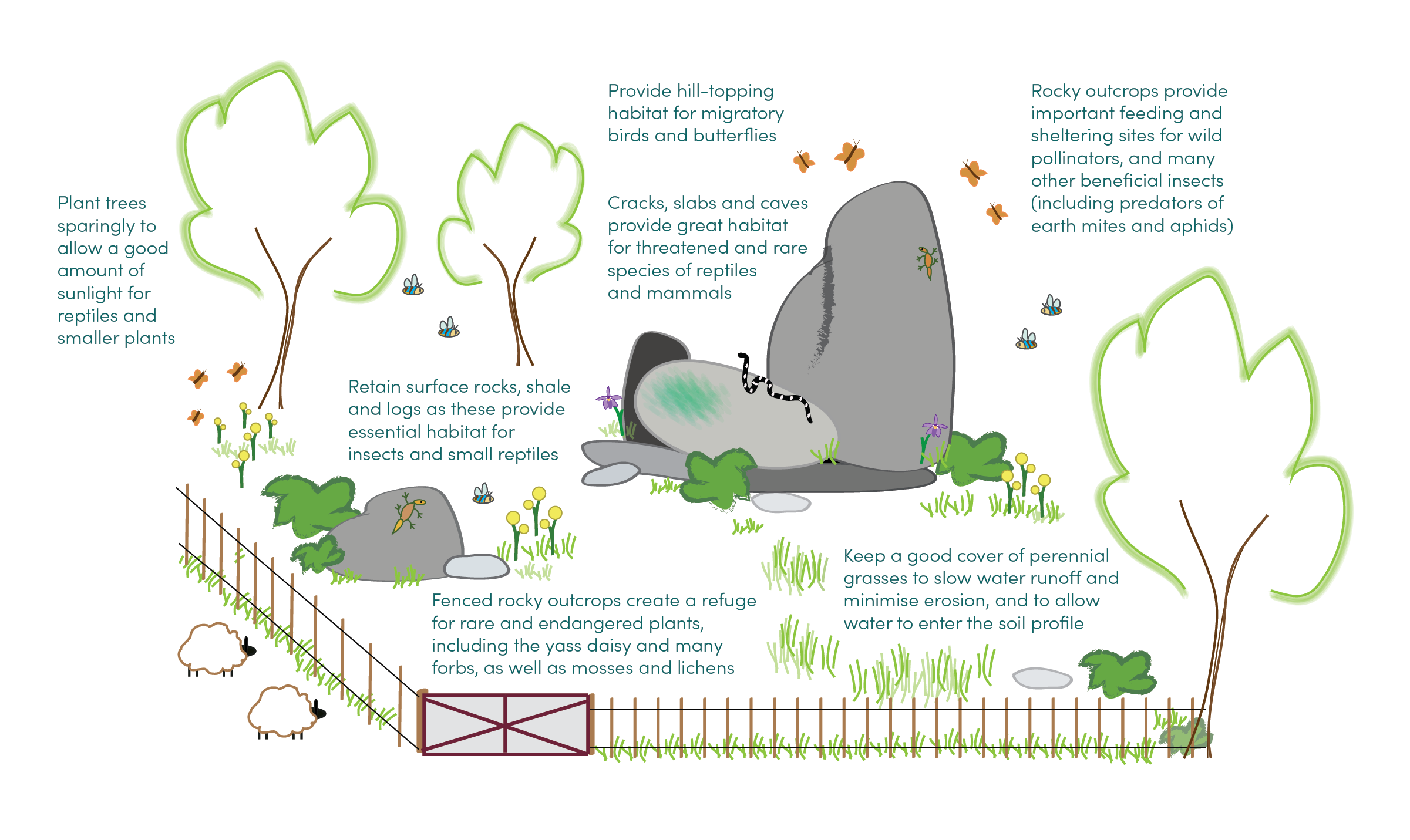 Diagram showing the fencing of a rocky outcrop