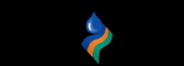 North East CMA (logo)